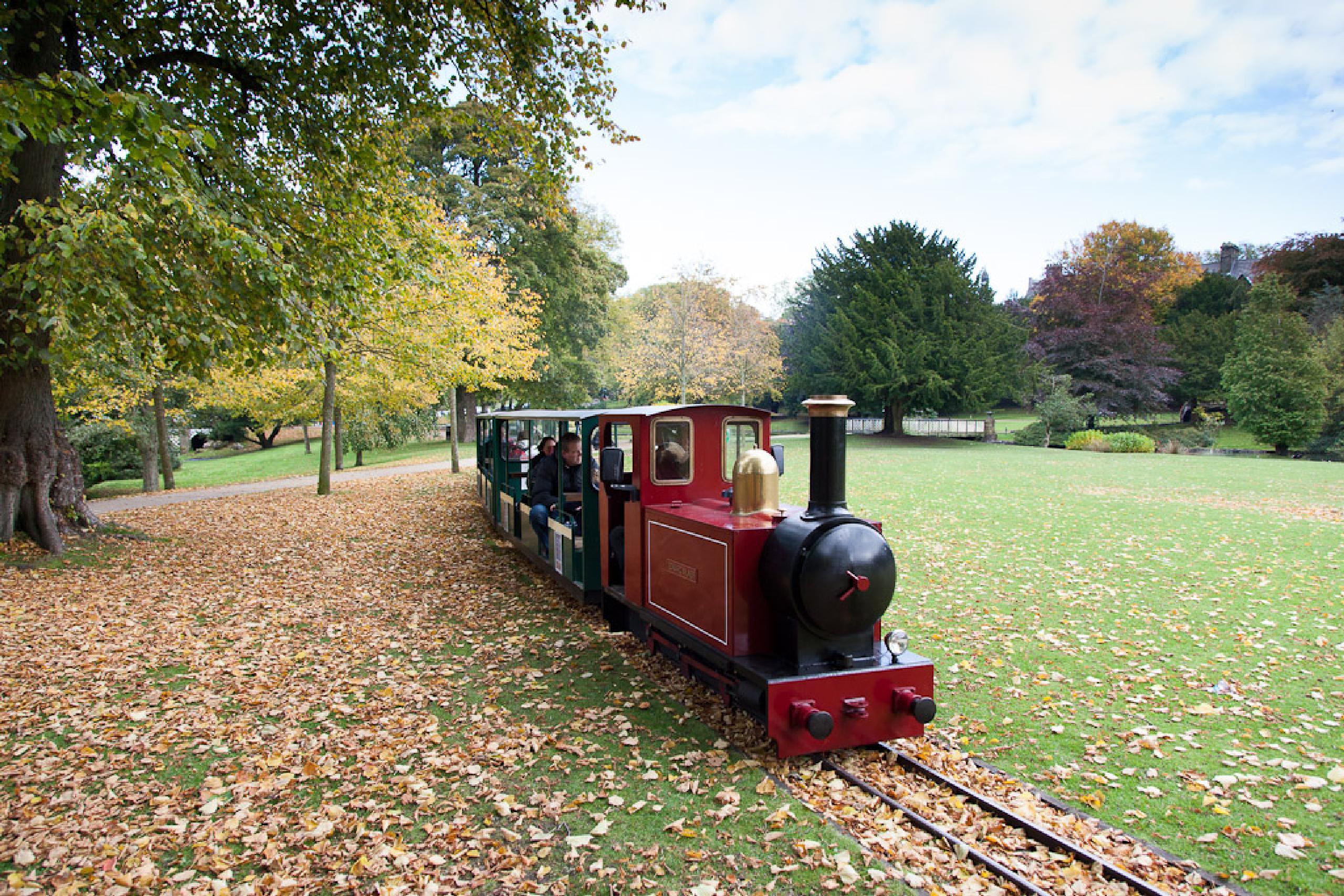 Miniature Train 1