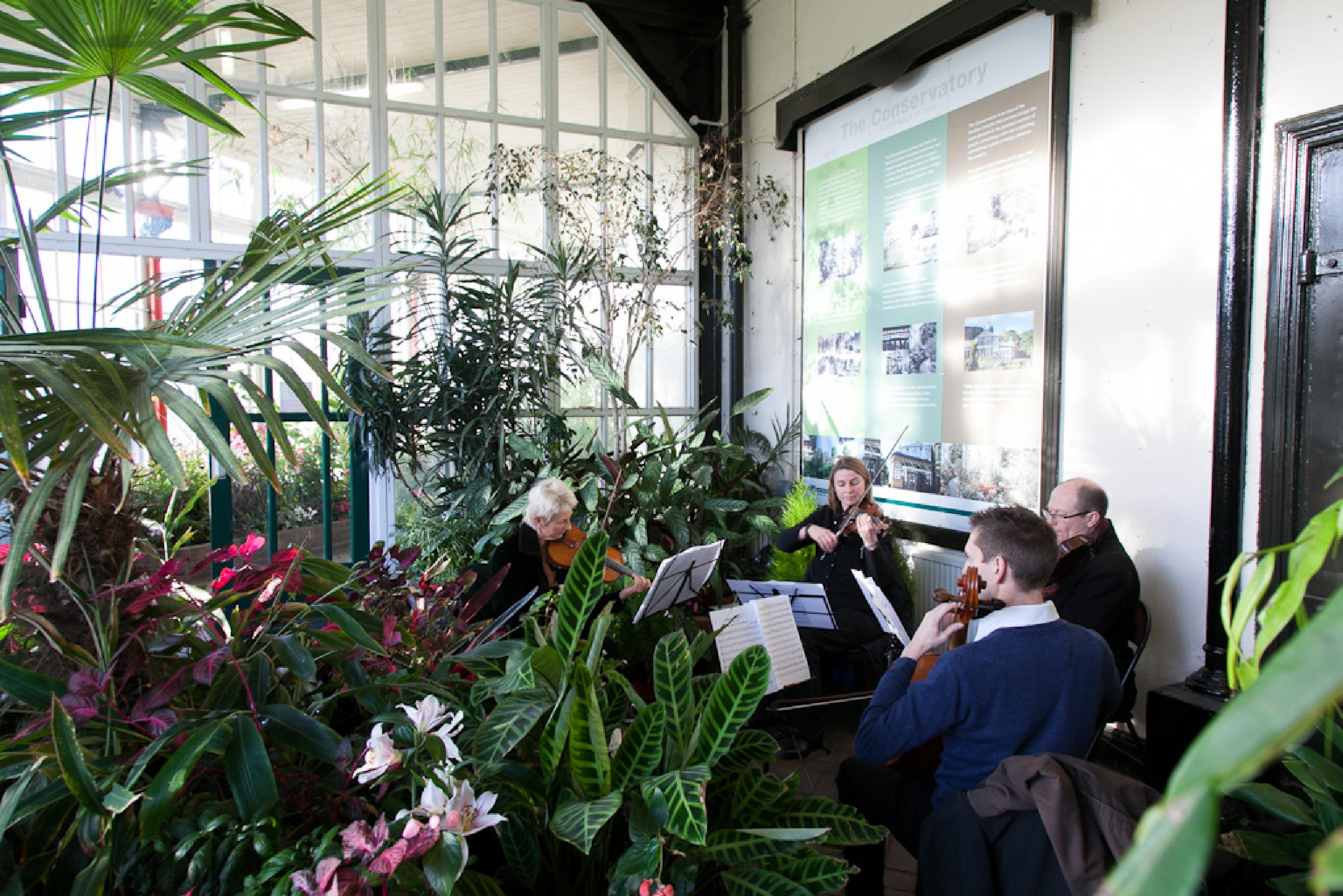 Conservatory Musicians